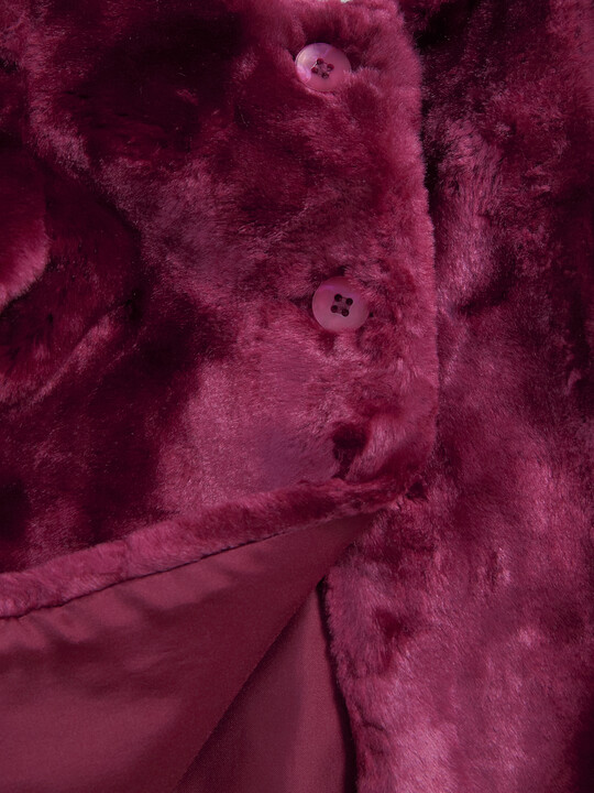 Faux Fur Coat image number 3