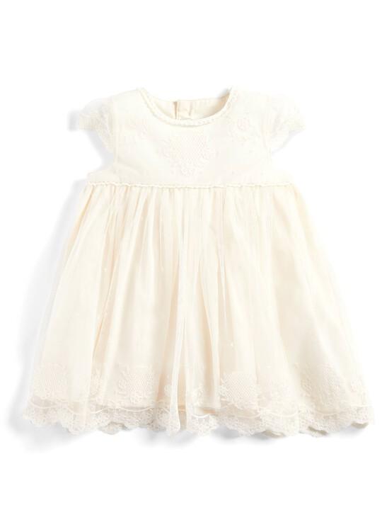 Vintage Lace Dress image number 1