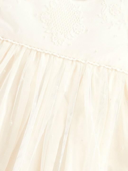 Vintage Lace Dress image number 3