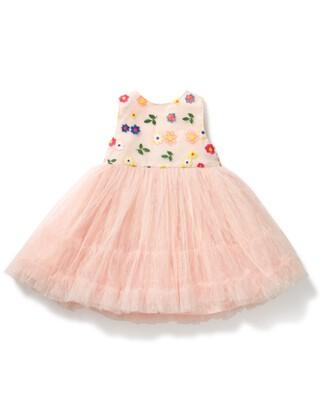 Embroidered Tutu Dress