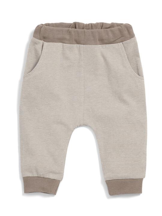 Acorn Bodysuit & Leggings Set image number 5